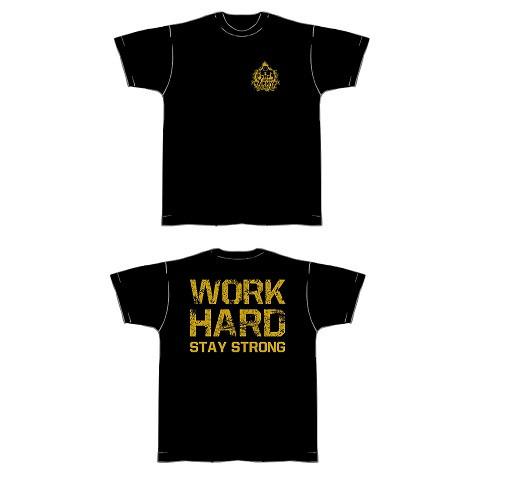 Gym Shirt Herren Schwarz mit goldfarbenen Aufdruck - T-Shirt Fitness von NF24 (Abbildung ähnlich)